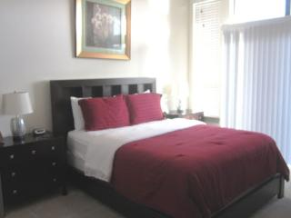 Furnished 1-Bedroom Apartment at Westheimer Pkwy & Commercial Center Blvd Katy - Katy vacation rentals