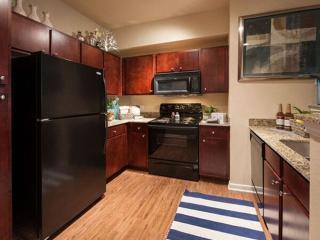 Romantic 1 bedroom Conroe Condo with Internet Access - Conroe vacation rentals
