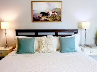 1 bedroom Condo with Internet Access in The Woodlands - The Woodlands vacation rentals