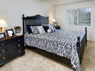 Modern and Spacious 2 Bedroom Apartment - La Mesa vacation rentals