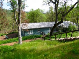 Sequoia Resort House 3 - 3 bedroom vacation home - Badger vacation rentals