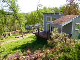 Sequoia Resort House 2 - studio vacation cabin - Badger vacation rentals