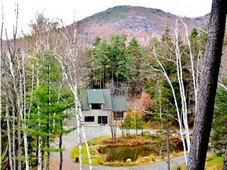 The Hurricane Lodge at ADKViews - Keene vacation rentals