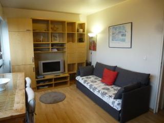 Apartment furnished 1 bedroom Porte de Versailles - Paris vacation rentals