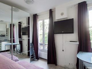 Studette Flat Avenue de Versailles Paris 16ieme - Paris vacation rentals