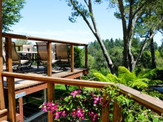 Heart of the Wine Country- 5 Bedroom, Sleeps 14 - Sebastopol vacation rentals