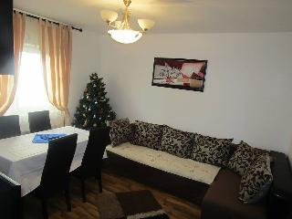 Cozy Apartment in Busteni with Central Heating, sleeps 6 - Busteni vacation rentals