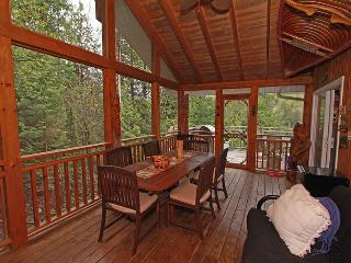 Cozy 3 bedroom Cottage in Haliburton - Haliburton vacation rentals