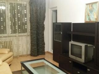 Perfect Condo with Television and Fitness Room - Bucharest vacation rentals