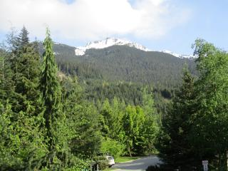 #17 Taluswood Place Whistler BC - Ski-in 2 minutes - Whistler vacation rentals
