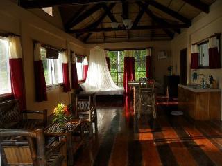 Perfect 2 bedroom House in General Luna - General Luna vacation rentals