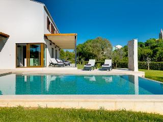 Luxury, modern built villa with private pool - Sveti Petar u Sumi vacation rentals