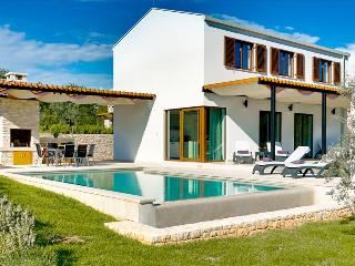 Luxury, modern built villa with private pool - Sveti Petar u Sumi vacation rentals