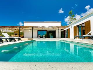 Beautiful newly bulit modern villa with private pool - Sveti Petar u Sumi vacation rentals