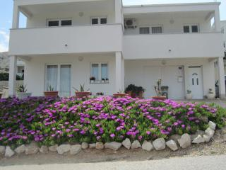 VERONIKA(1963-5093) - Pag vacation rentals