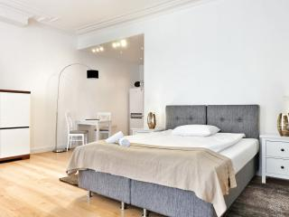 Spacious Top Spot Residence 6 apartment in Brussel centrum with WiFi & lift. - Brussels vacation rentals
