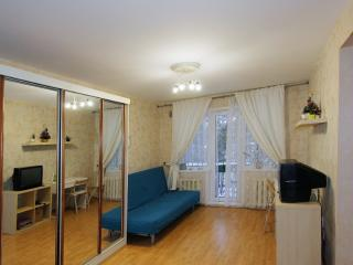 1 bedroom Apartment with Internet Access in Novosibirsk - Novosibirsk vacation rentals