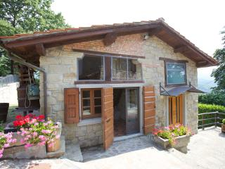 Cottage with pool in the heart of Tuscany - Stia vacation rentals