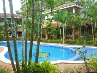Villa Fountain Court near Anjuna and Vagator beach - Assagao vacation rentals