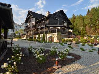 Norwegian Valley Amazing Apartments for rent . - Szklarska Poreba vacation rentals