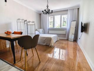 A beautiful getaway in the heart of Belgrade - Belgrade vacation rentals