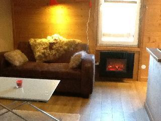 Cote brune 5  appart c bis5 au pied des pistes - Les Deux-Alpes vacation rentals