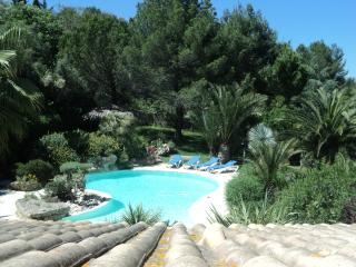 Superb Secluded 3 Bed Villa with Pool & Gardens - Roujan vacation rentals