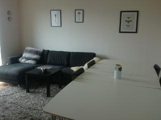 Bright modern Copenhagen apartment at Ny Ellebjerg st - Copenhagen vacation rentals