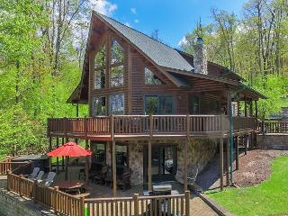 Casa Montes: Enjoy Lake views & Lake access from centrally located log home! - Oakland vacation rentals