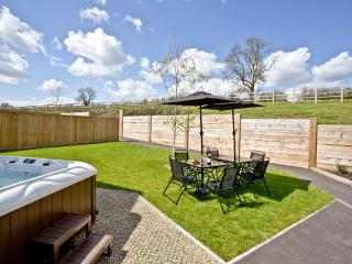Millstone located in Glastonbury, Somerset - Middlezoy vacation rentals