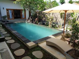 Awesome Private Pool Villa in Lovina - Anturan vacation rentals