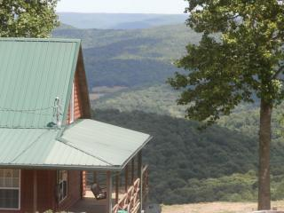 Lovely Cabin with Internet Access and A/C - Altamont vacation rentals