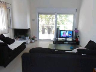 Nice House with Internet Access and A/C - Skala Oropou vacation rentals