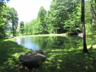 Unique Smokey Mountain Retreat - Andrews vacation rentals