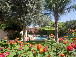 Reginas Royal Sylvia 4BDR,PRIVATE POOL,GARDEN,WIFI - Oroklini vacation rentals