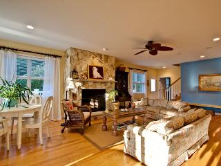 Wonderful 7 bedroom House in Rehoboth Beach - Rehoboth Beach vacation rentals