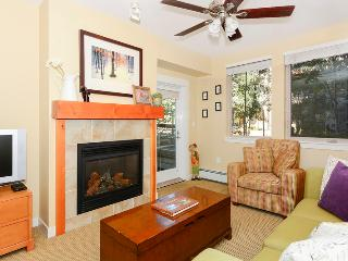 1 bedroom House with Internet Access in Winter Park - Winter Park vacation rentals