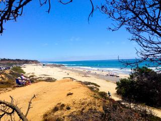 NEW! Steps to Sand, Walk to Village, Pet Friendly - Carlsbad vacation rentals