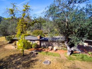 Mid-Century Modern Rustic Retreat By Sequoia Park - Three Rivers vacation rentals