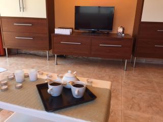 Granvista Penthouse Duplex Apartment - Lloret de Mar vacation rentals
