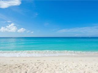 Bright Condo with Internet Access and A/C - Grand Cayman vacation rentals