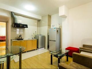 Sunny 1bdr/1lvr apt for Couple/Student at Caoyang - Shanghai vacation rentals