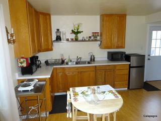 Spacious 1bd/ 1b1 with easy access to Berkeley - Richmond vacation rentals