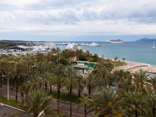 Cannes Croisette seaview 1bedroom flat garage wifi - Cannes vacation rentals