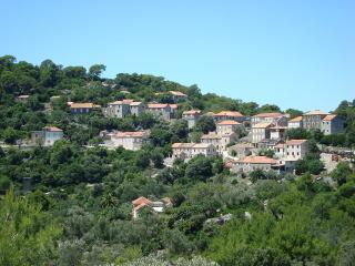 Cozy 2 bedroom Apartment in Mljet - Mljet vacation rentals