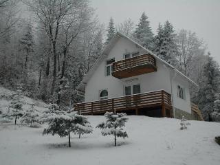 Vila Cristal 2 - Sucevita vacation rentals