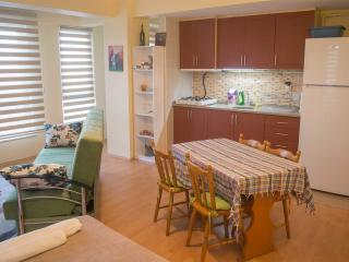 Tavukcu Ahmet Bright Sunny Corner Apartment - Denizli vacation rentals