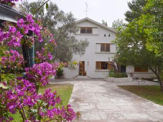 Perfect 3 bedroom Villa in Nea Makri - Nea Makri vacation rentals