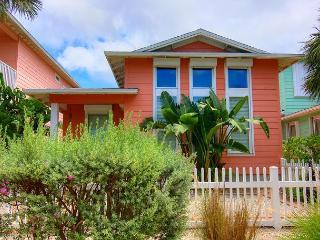 3 Bedroom  2 1/2 bath in the Village Walk Subdivision - Port Aransas vacation rentals
