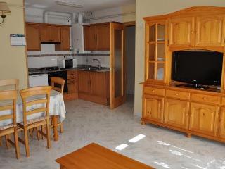 BONITO APTO. EN ESTERRI D'ANEU (Lleida) - Esterri d'Aneu vacation rentals